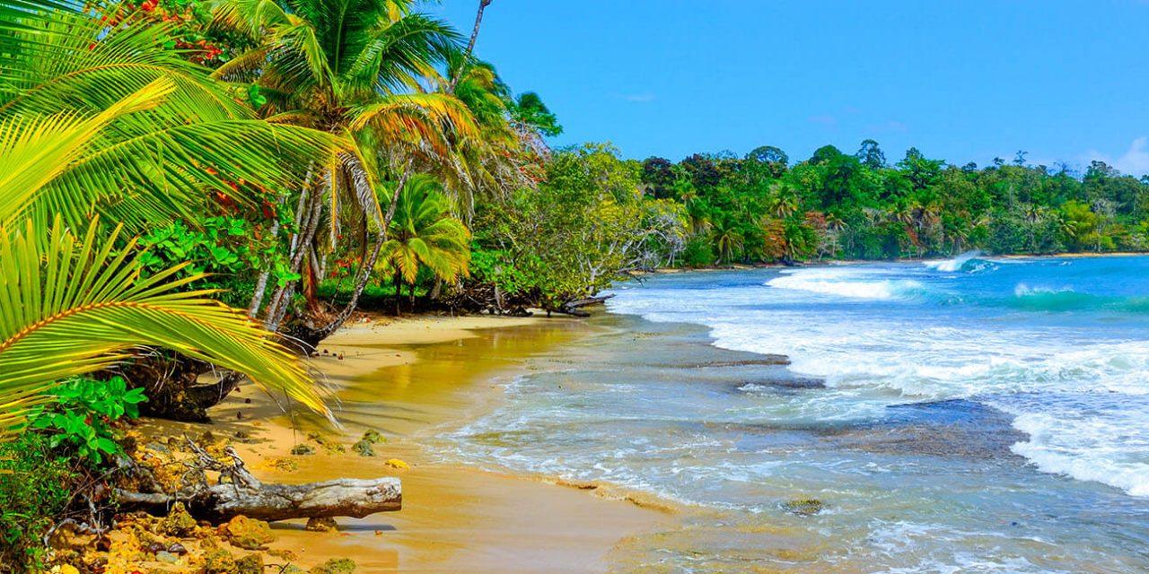https://active-voyages.fr/wp-content/uploads/2019/05/Bocas-del-Toro-Ile-Colon_Voyage_sur_mesure_voyage_en_famille_active_voyages_Montpellier-1280x640.jpg