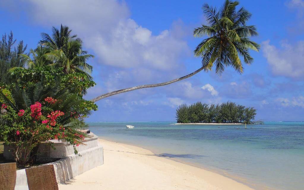 https://active-voyages.fr/wp-content/uploads/2020/02/Moorea-Beach-Lodge-Polynésie-française-1-2-1024x640.jpg