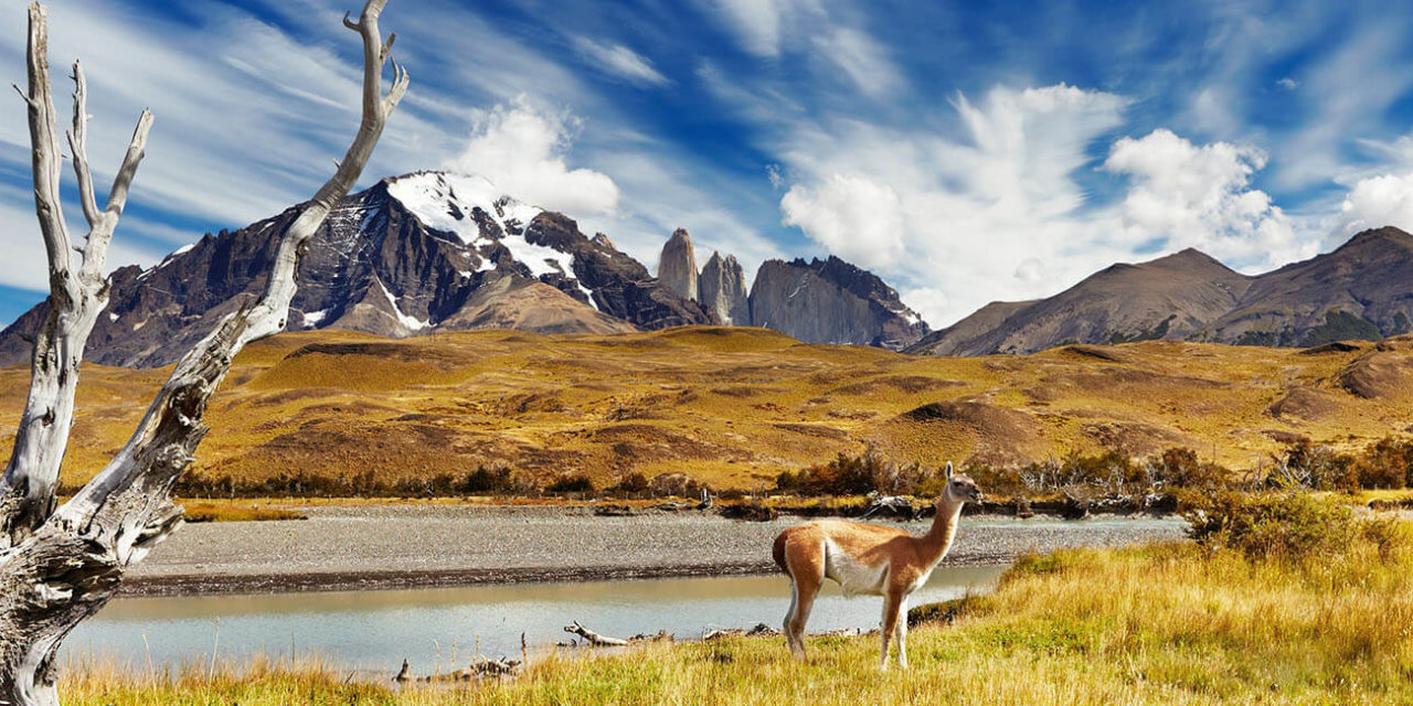 https://active-voyages.fr/wp-content/uploads/2020/02/Torres-del-Paine-en-Patagonie-au-Chili-1-1280x640.jpg