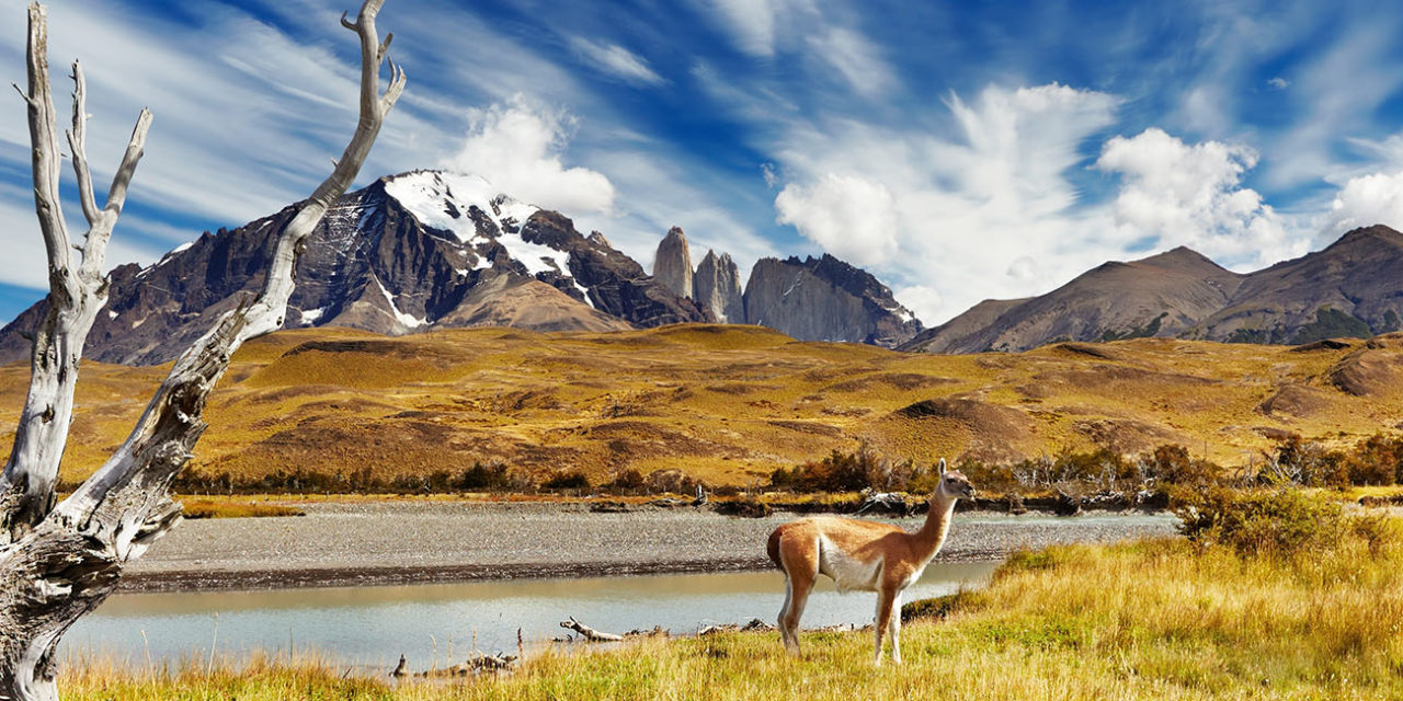 https://active-voyages.fr/wp-content/uploads/2020/02/Torres-del-Paine-en-Patagonie-au-Chili-1280x640.jpg