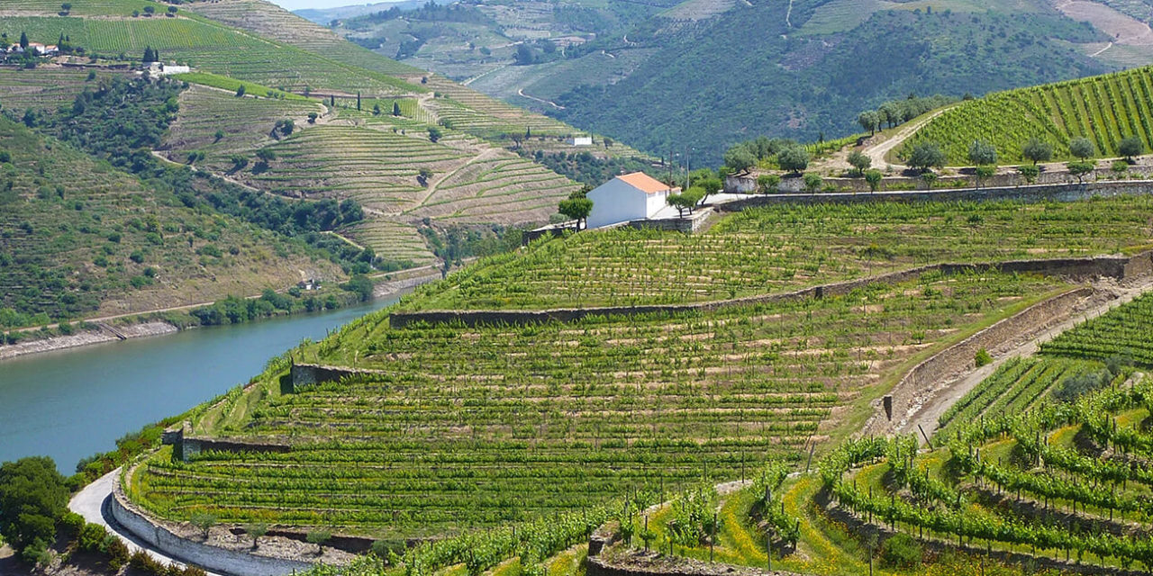 https://active-voyages.fr/wp-content/uploads/2020/03/Vignobles_vallée_du_Douro_Portugal_Voyage_cousu_main_voyage_sur_mesure_voyage_en_famille_active_voyages_Montpellier-1280x640.jpg