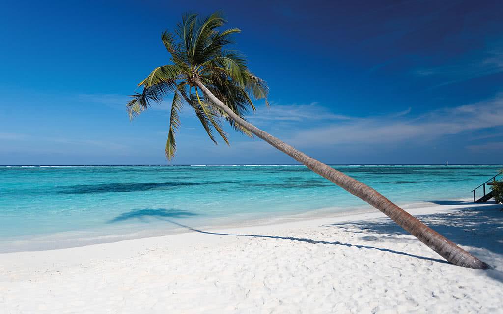 https://active-voyages.fr/wp-content/uploads/2020/04/meeru_island_resortspa4.jpg