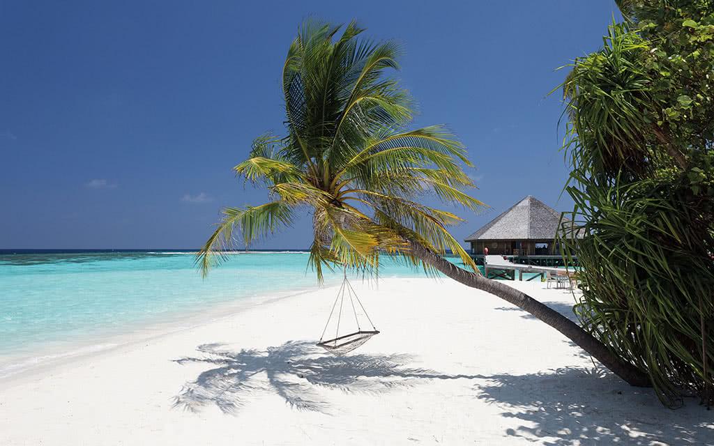 https://active-voyages.fr/wp-content/uploads/2020/04/vilamendhoo_island_resortspa_maldives5.jpg